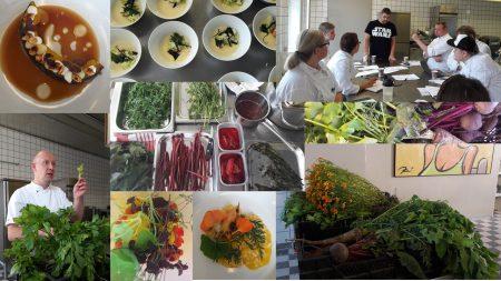 Gastronomian Akatemian mestarikurssi käynnistyi!